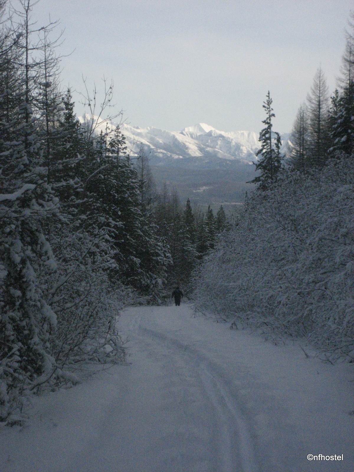 skiing off Spruce Creek Road