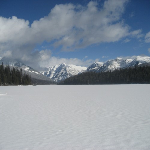 Logging Lake